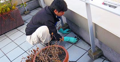 ビルやマンションの屋上・ベランダのお掃除サービス